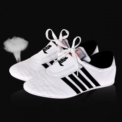 Chaussures Taekwondo